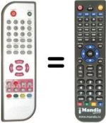 Replacement remote control DANYSTAR DVB-T136